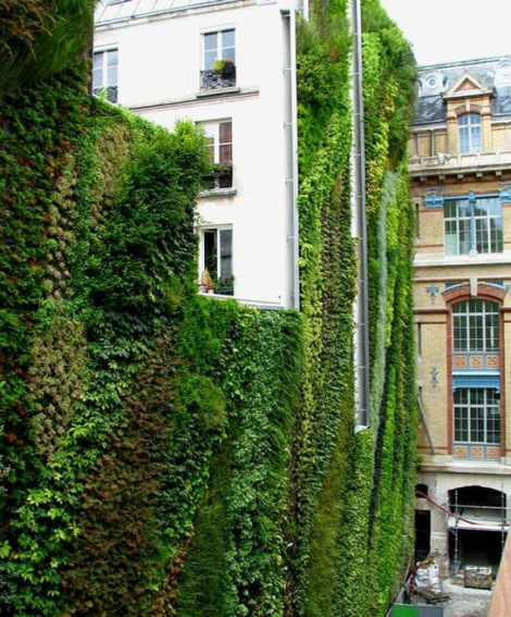 jardin-vertical01