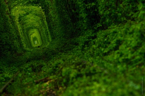 El tunel del amor